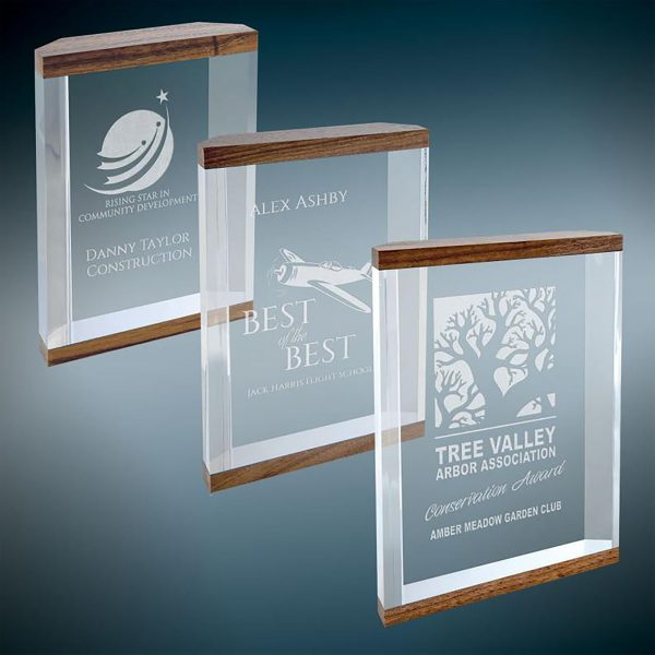 Corporate Recognition Awards | Walnut Double Banded Acrylic Award