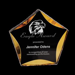 Acrylic Star Award Gold