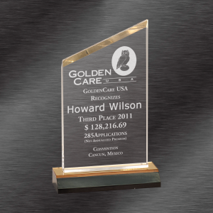 Gold Reflection Peak Award